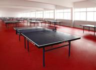 【江阴】青阳中学乒乓球PVC地板