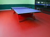 【成都】杰喜美运动乒乓球PVC地板
