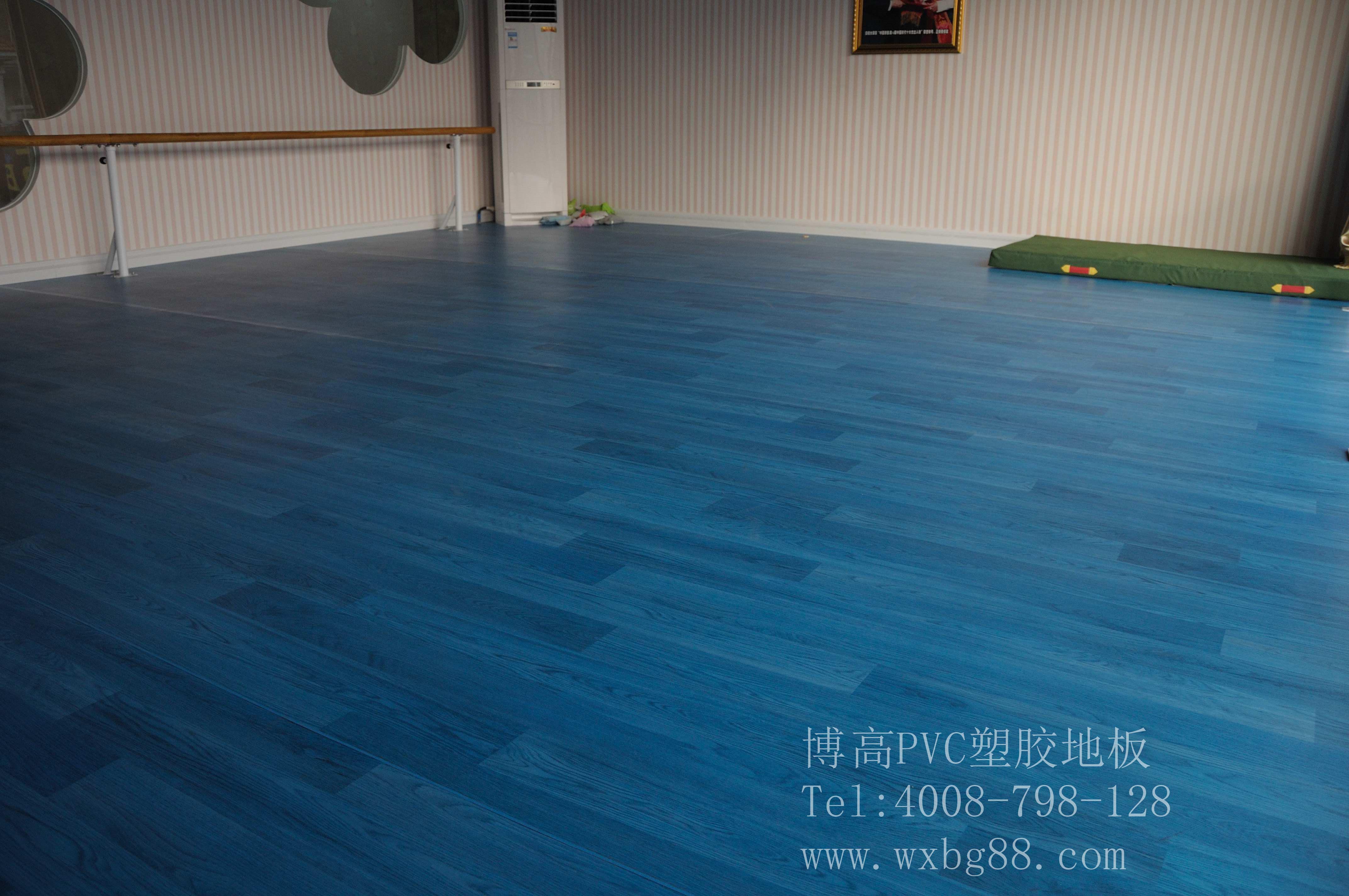 【广东】冰与火舞蹈学校舞蹈房地胶