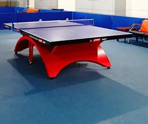乒乓球室PVC塑胶地板价格是多少?