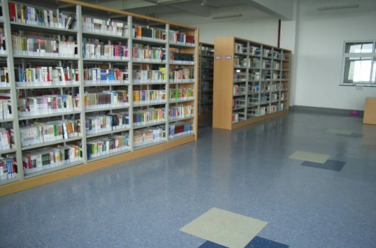 PVC塑胶地板的十大细分市场