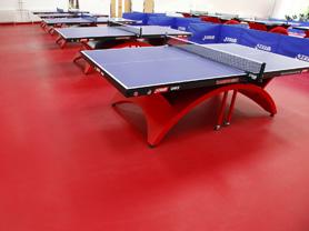 乒乓球地胶工程解决方案